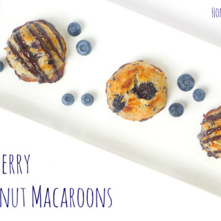 Blueberry Coconut Macaroons