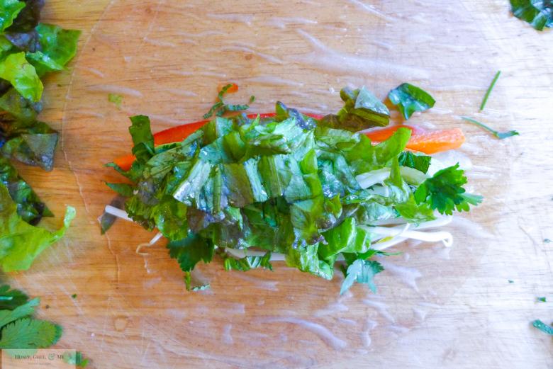 thai-satay-peanut-sauce-spring-rolls-healthy-38