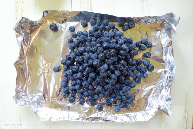 blueberry bbq sauce-2